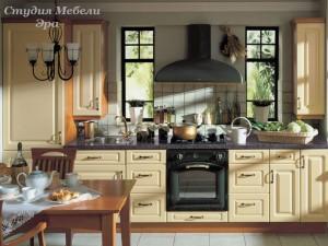 Кухня эмаль №19
